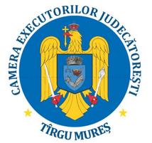 cej-mures-logo-mic