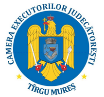 cej-mures-logo-mic_new